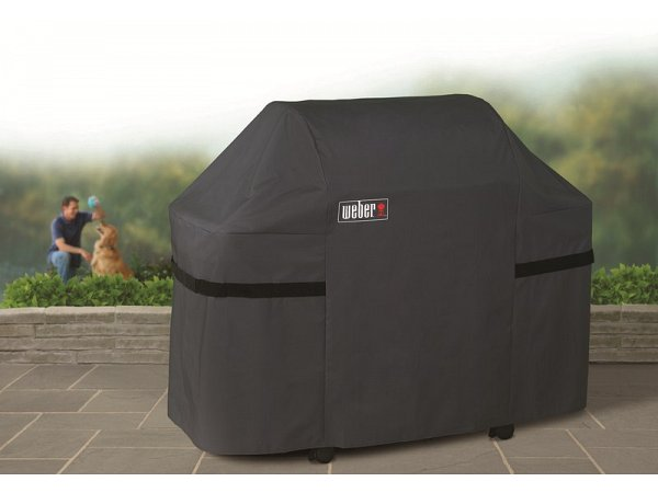 gas barbecue Cases